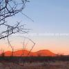 "OLYMPUS DIGITAL CAMERA SEE ALSO:  <a href=""http://www.blurb.com/b/685976-africa"">http://www.blurb.com/b/685976-africa</a>"