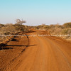 Red dirt track winds through African landscape towards horizon.