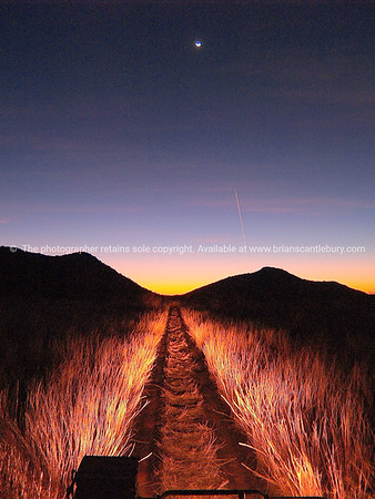 Safari night drive, SEE ALSO: www.blurb.com/b/685976-africa