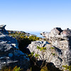"Jagged granite rocks atop Table Mountain, Cape town, South Africa. SEE ALSO:  <a href=""http://www.blurb.com/b/685976-africa"">http://www.blurb.com/b/685976-africa</a>"