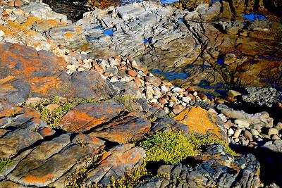 Rocky Path_0684B-2