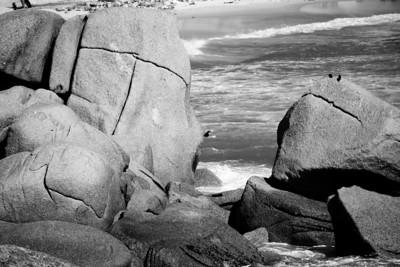 Surfer_0526B-2