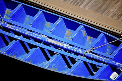 Blue Ribs_0774C-2