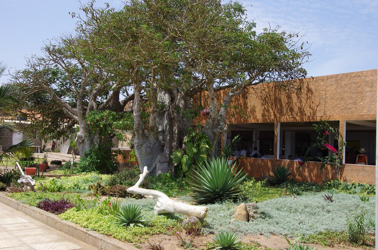 Restaurante Imbombeiros Da Kwaanza