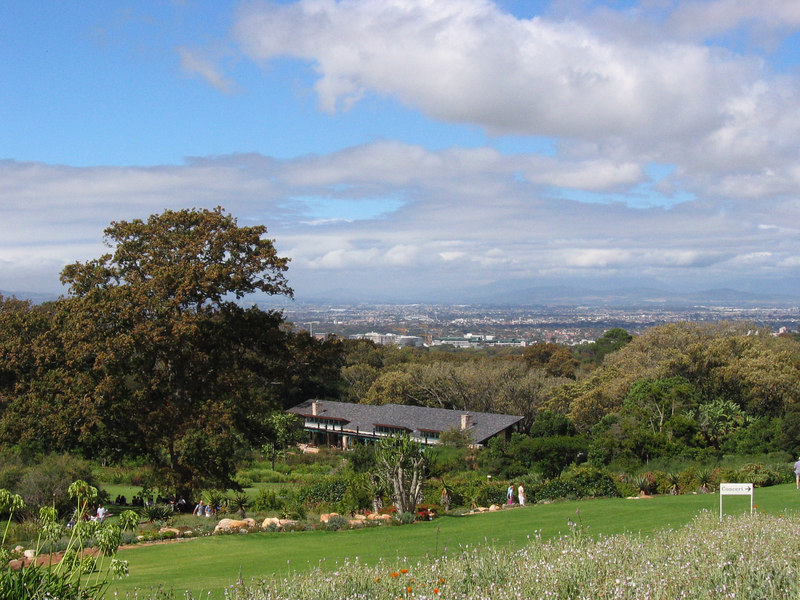 View from Kirshtenbosch Gardens