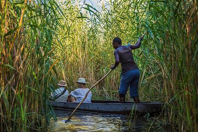 Okavango Delta, Botswana Poling a Makoro Canoe through the Okavango Delta.