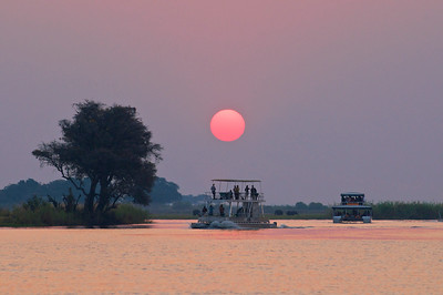 Cruise boats on the Chobe River