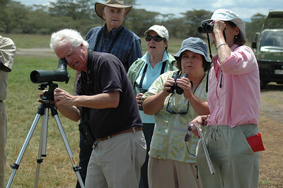 It is a distinct advantage to travel with other birders. In addition to their good humor and company, I also see so many more birds when there are many eyes helping to spot and locate each species.