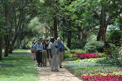 We get off the plane in Nairobi and are quickly transported to our hotel, Nairobi Safari Park lodge. After a comfortable nights rest, we start to enjoy the local birds in the gorgeous hotel gardens. On all Mass Audubon tours, hotels are selected because they are locally owned, well located with good birding nearby and, of course, very comfortable and clean.