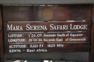 Our hotel in the heart of the park has expansive views.  http://www.serenahotels.com/serenamara