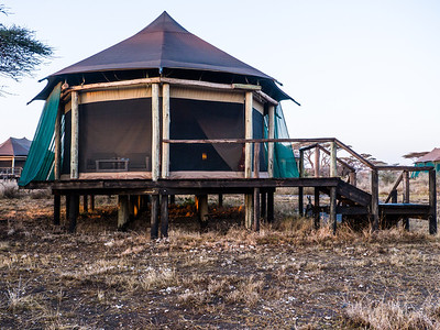 Our tent at the camp. Raised tents seem to be correlated with foraging hippos at night!