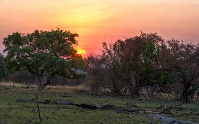 Gotta get on one last sunrise in the Serengeti - I do not want to see another sunrise for a long time :-)