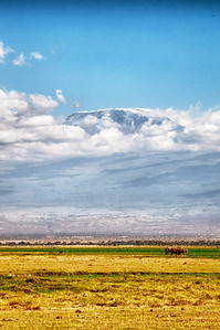 Amboseli is famous for its elephants and Mt. Kilimanjaro