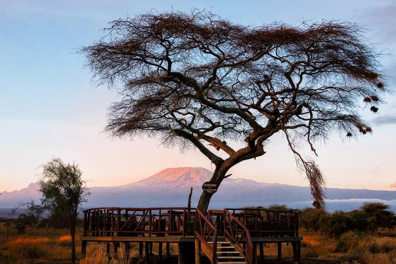 We had to scuttle early and fast to get a view of Kilimanjaro at sunrise before breakfast.