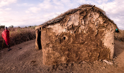 "We visited a Masai kraaal. The huts are made of dung smeared over a wood lattice - ""wattle and daub"""