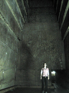 In the heart of the Red Pyramid are several large chambers. Steph lives in this one.