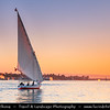 Egypt - Luxor - Felucca - Traditional sailboats of Egypt's Nile sailing in the evening time - طيبة‎ - UNESCO World Cultural Heritage site on banks of river Nile - الأقصر - al-Uqṣur