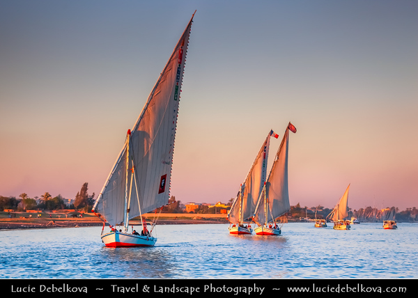Egypt - Luxor - Felucca - Traditional sailboats of Egypt's Nile sailing in the evening time - طيبة - UNESCO World Cultural Heritage site on banks of river Nile - الأقصر - al-Uqṣur