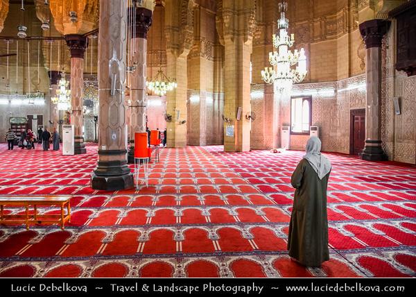 Egypt - Alexandria - Al-Iskandariyya - Αλεξάνδρεια - Ancient City on Shores of Mediterranean Sea - Abu el-Abbas el-Mursi Mosque in Anfoushi (Al-Mursi Abu'l-'Abbas Mosque)