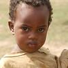 Oromiya,  near Negele, 1800m