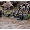 McCrae Kenya 2010 - 2010 - IMG_1059