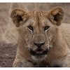 McCrae Kenya 2010 - 2010 - IMG_1112