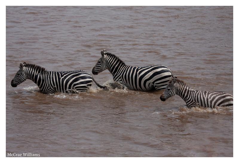 McCrae Kenya 2010 - 2010 - IMG_1061