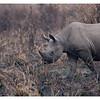 McCrae Kenya 2010 - 2010 - IMG_1299