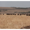 McCrae Kenya 2010 - 2010 - IMG_1263