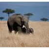 McCrae Kenya 2010 - 2010 - IMG_1254