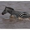 McCrae Kenya 2010 - 2010 - IMG_1039