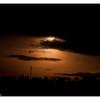McCrae Kenya 2010 - 2010 - IMG_1180