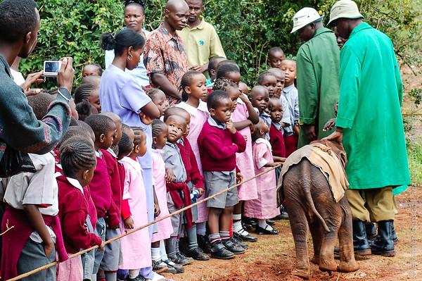 Local school children at the Sheldrick Centre