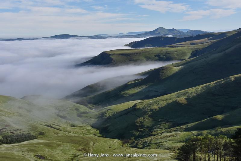 view near Witsieshoek