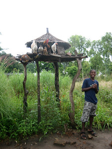 Visiting Kande village on the northern shore of Lake Malawi. Our guide Caesar explains that the chicken houses are built on stilts to prevent hyena attacks during the night.