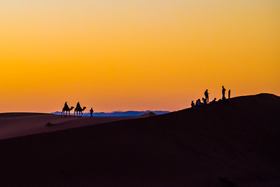 Sunset Camels and iPhones