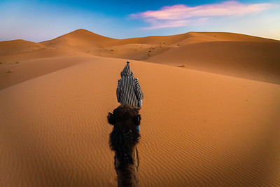 Camel Ride through the Sand Dunes
