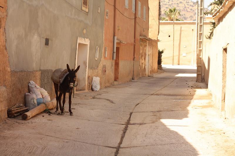 Small town near Agadir. June 2103