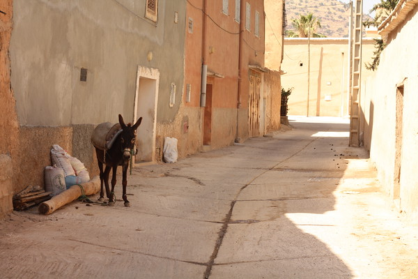 Small town near Agadir. June 2103