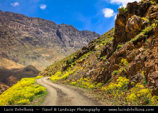 Northern Africa - Kingdom of Morocco - High Atlas Mountains - Toubkal National Park - Rhirhaia valley towards Tizi N'Tacheddirt - Tachdirt - Mountains valley surrounded with mighty ridges