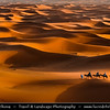 Africa - Morocco - Er Rachidia - Sahara Desert - Merzouga - Sand Dunes of Erg Chebbi - One of Morocco's two Saharan ergs - Large sea of dunes formed by wind-blown sand - 150 m high dunes are beginning for classic sahara setting