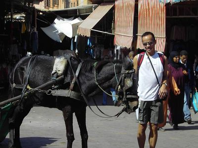 Jimmy_Horse