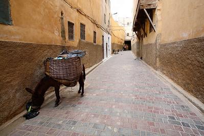 Fes_Medina Sanitation_6429