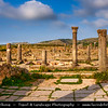 Africa - Morocco - Archaeological Site of Volubilis - Walili - UNESCO World Heritage Site - North African Ancient Roman City Ruins - One of the largest ancient ruins in Africa