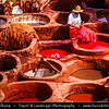 Africa - Morocco - Fes - Fez - UNESCO World Heritage Site - Imperial Historic City founded in 9th century - Old Medina - Traditional complex of medieval tanneries where beautiful leather is made from sheep, goat, cow & camel skin