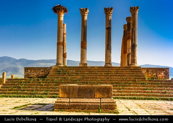 Africa - Morocco - Archaeological Site of Volubilis - Walili - U