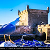 Africa - Morocco - Atlantic coast - Essaouira - UNESCO World Her