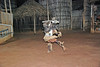 African Dance, Zimbabwe