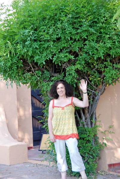 Liz at Chobe Game Lodge, Botswana