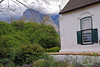 Mountains Backdrop, Boschendal